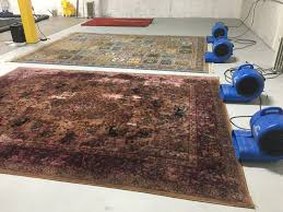 Area Rugs Louisville What Is A To Be A Professional Area Rug Cleaning Company