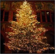 lighted tree image ideas marvelous