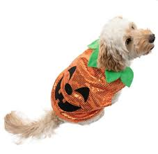 Halloween Costumes For Dogs B U0026m Is Selling Spooky Halloween Costumes For Dogs With Prices