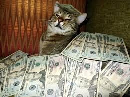 Rich Cat Meme - image 338837 cashcats know your meme