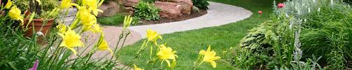 landscape design tallahassee lawn service design ideas best house