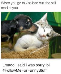 U Still Mad Meme - when you go to kiss bae but she still mad at you lmaoo i said i was
