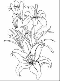 astonishing coloring pages flowers panda with coloring