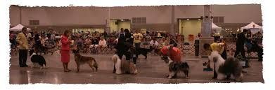 langley kennel club all breed club licensed by the american