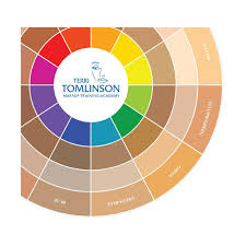 terri tomlinson flesh tone color wheel frends beauty supply