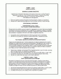 100 Professional Architect Resume Sample Bi Manager Resume Bank Manager Resume Template Resume Builder
