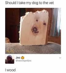 Dog At Vet Meme - dopl3r com memes should i take my dog to the vet joc