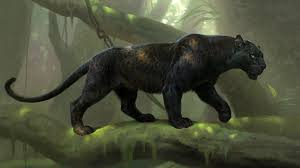 black panther 2018 4k wallpapers the jungle book 2016 wallpapers pictures images