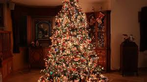 most beautiful christmas trees youtube