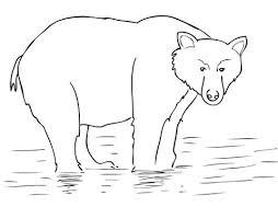 alaska brown bear coloring free printable coloring pages