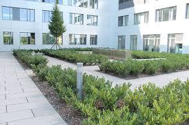 landschaftsbau m nchen bildergalerie unseres projektes landsberger str gzimi gartenbau