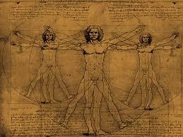 Leonardo Da Vinci Human Anatomy Drawings Leonardo Davinci 1452 1519 67 U2022 U2022the Vitruvian Man U2022 U2022 The Golden