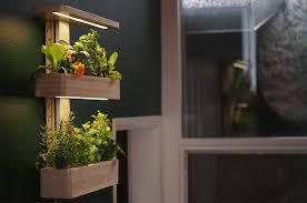 indoor wall garden ēdn intelligent indoor gardens