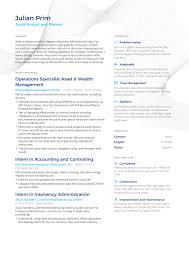 successful resume successful resumes auditing enhancv