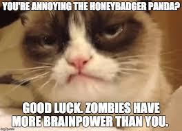 Good Grumpy Cat Meme - disapproving grumpy cat memes imgflip