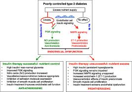 insulin resistance as a physiological defense against metabolic