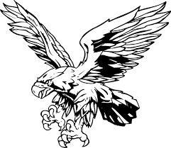 exclusive red hawk clip art picture clip art library