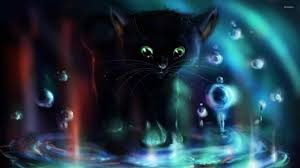 cute black cat halloween wallpaper geborneo club geborneo club