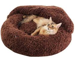 Covered Dog Bed Pet Bed Blanket Combo From Peppy Has Got Your Sleeping Pets