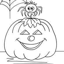 witch spider coloring pages hellokids