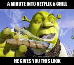 Chill Meme - top ten netflix chill weed memes 2016 for stoners