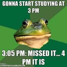 Cpa Exam Meme - de 13 bästa cpa exam journey bilderna på pinterest
