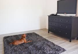 laminate floors from they are water and scratch