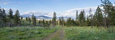 black friday sales bozeman mt fay ranches brokering the finest ranches and land for sale