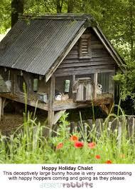 best 25 outdoor rabbit hutch ideas on pinterest bunny hutch