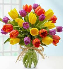 tulip bouquets tulips in butte mt tulip bouquets in butte mt ph 406 565