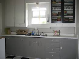 kitchen cabinet amazing ikea kitchen cabinets for new kitchen
