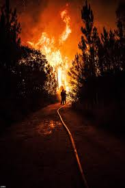 Wildfire Definition by British Tourists Flee Spanish Wildfire In Xabia U0027started By