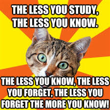 The More You Know Meme - the less you study cat meme cat planet cat planet