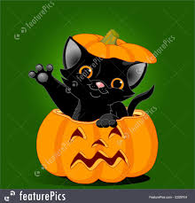 halloween black background pumpkin cat in pumpkin illustration