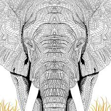 super hard abstract coloring pages for adults animals 236 best doodle animals images on pinterest coloring pages