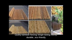6 1 8 fencing bamboo backyard privacy fence bamboo rolls panel