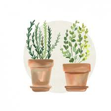 Design Flower Pots Watercolor Flowers Pots Design Vector Free Download