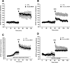 chronic morphine treatment impaired hippocampal long term