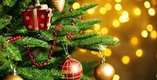 how to order a christmas tree online articlecube