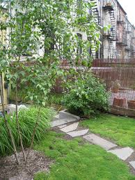 Backyard Ground Cover Options 71 Best Xeriscape Gardening Images On Pinterest Landscaping