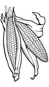 15 surprising corn clipart for free fruit names a z with pictures