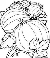 fall coloring pages google pumpkins