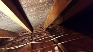 heat loss ice dams culprit for attic mold growth so often in attic spaces especially in the northeast region attics have large area spaces and most of the homes are very old many home inspectors keep