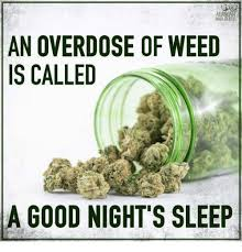 Marijuana Overdose Meme - an overdose of weed is called a good night s sleep meme on me me