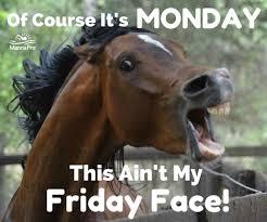 Horse Mask Meme - best of funny horse mask meme daily funny memes