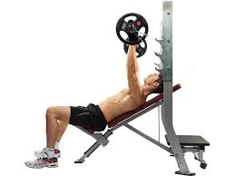 Incline Bench Muscle Group 15 Benefits Of The Incline Decline Bench Incline Vs Decline