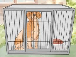 3 ways to host a party when you have a dog wikihow