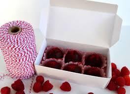 jennuine by rook no 17 dark chocolate raspberry truffles with