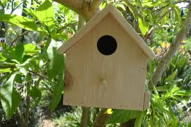 cool bird house plans easy bird houses and feeders u2013 awesome house easy bird houses