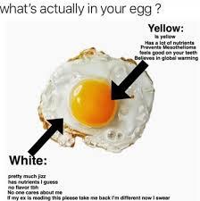 Egg Meme - egg meme by dombot memedroid